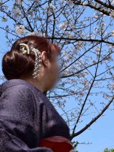 桜(さくら)6:博多熟女亭・ 大和撫子(福岡高級デリヘル)