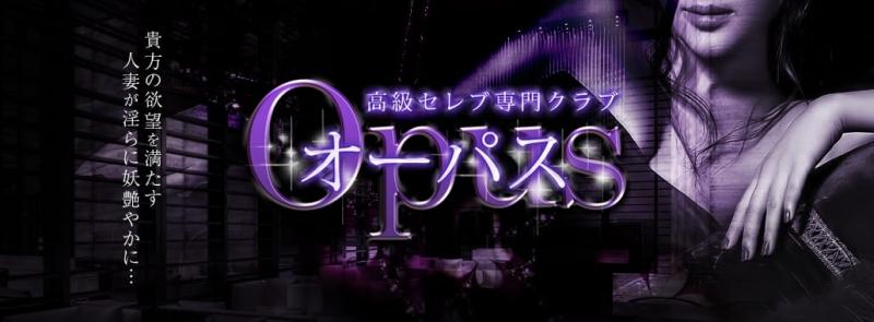 オーパス(新宿高級デリヘル)