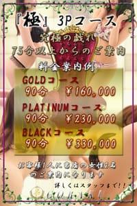 高級デリヘル 娯楽~GORAKU~★極3Pコース新設★:娯楽~GORAKU~(渋谷・恵比寿・青山高級デリヘル)