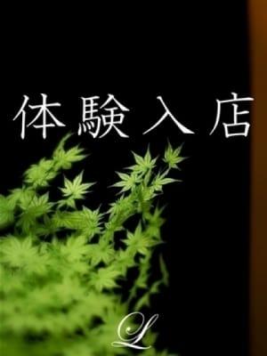 斉藤 乙葉:赤坂 高級デリヘル L【エル】(六本木・赤坂高級デリヘル)