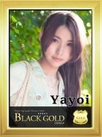 やよい:Black Gold Osaka(大阪高級デリヘル)