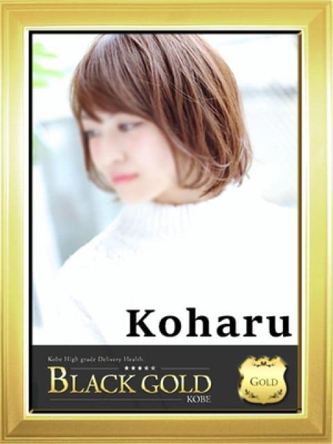 こはる:Black Gold Kobe(神戸・三宮高級デリヘル)