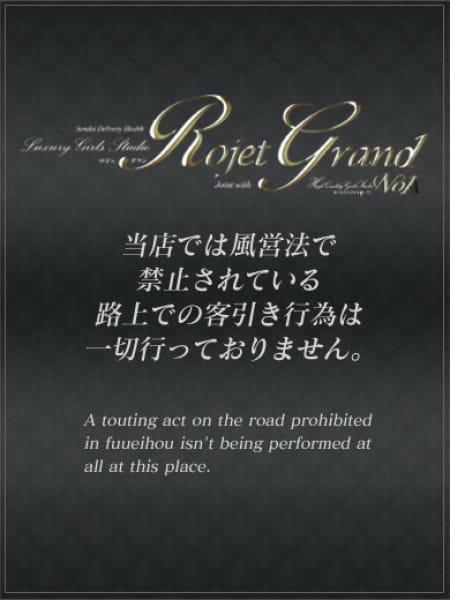 一条 麗子3:Rojet Grand -ロジェグラン-(北海道・東北高級デリヘル)
