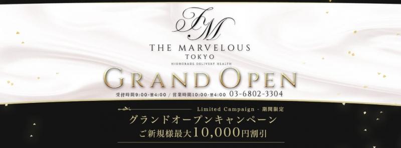 THE MARVELOUS TOKYO(銀座・汐留高級デリヘル)