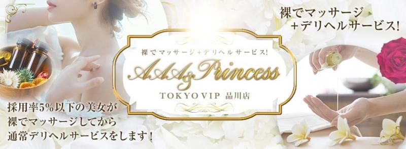 裸でマッサージ+デリヘルサービス!AAA&Princess+TOKYO VIP 品川店(六本木・赤坂高級デリヘル)