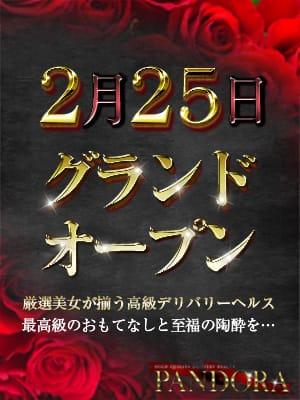 ◆銀座・六本木高級デリヘル-パンドラ-オープンイベント開催中◆:PANDORA~パンドラ~(銀座・汐留高級デリヘル)