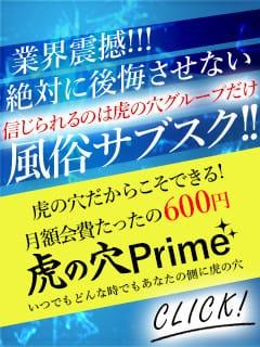 ◆毎月無料券が当たる◆ 虎の穴Prime!!!:CLUB虎の穴 青山店(渋谷・恵比寿・青山高級デリヘル)